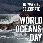 world-oceans-day-square